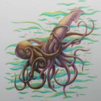 OctopSquid